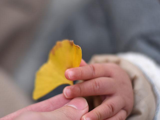 イチョウの葉を持つ子ども